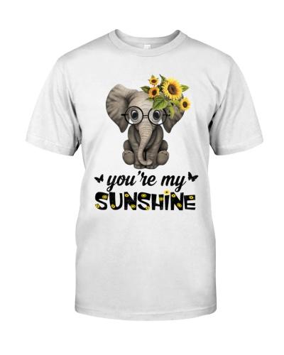 Elephants sunshine