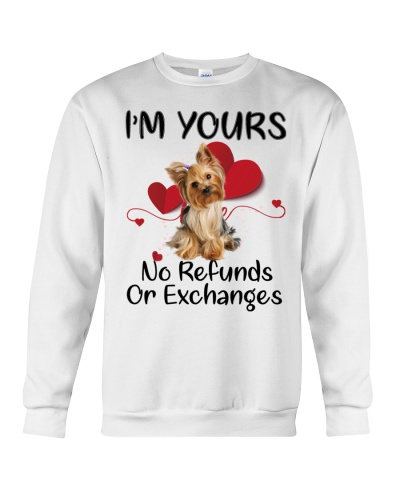 I'm yours no or exchanges Yorkshire terrier