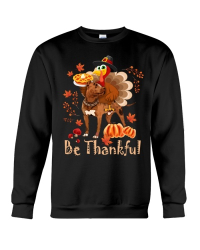 Pitbull be thankful