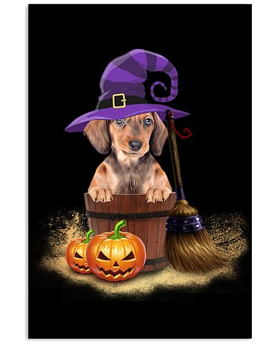 Dachshund hat sand and pumpkin