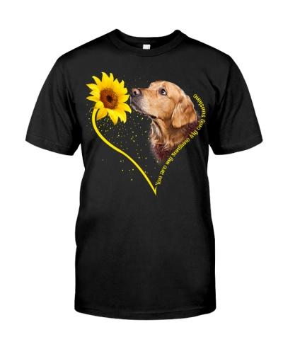 Golden retriever sunshine heart