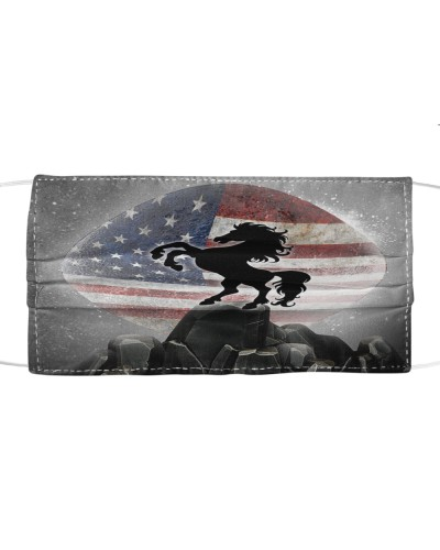 SHN 7 American flag moon rock Horse