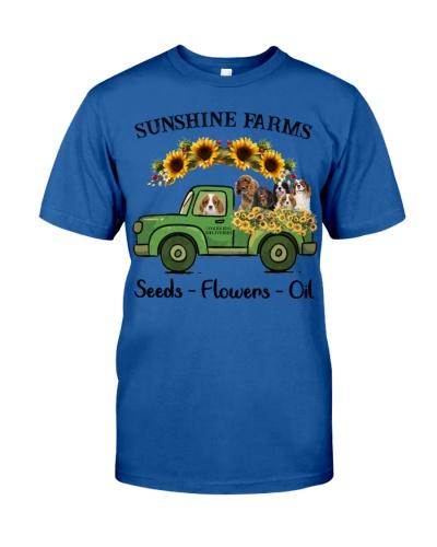 SHN Sunshine farms Cavalier King Charles Spaniel