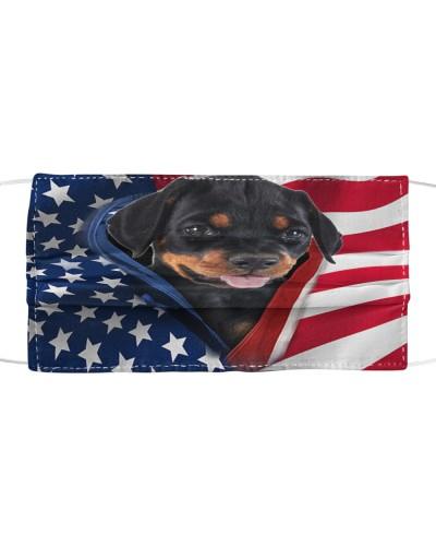 SHN 10 Opened American flag Doberman Pinscher