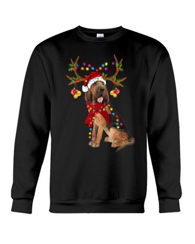 Bloodhound gorgeous reindeer