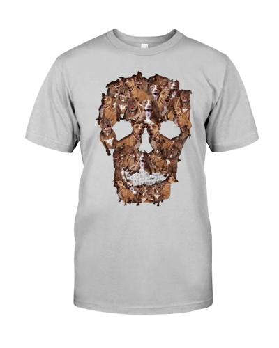 Pitbull skull