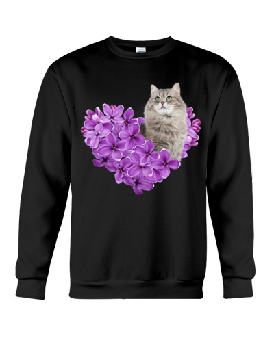 My heart is full by violet color cat