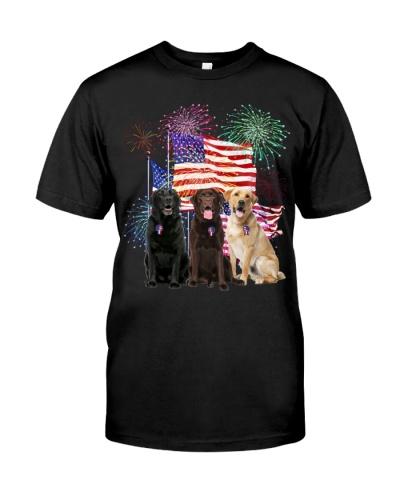 Labrador Retriever under firework independence