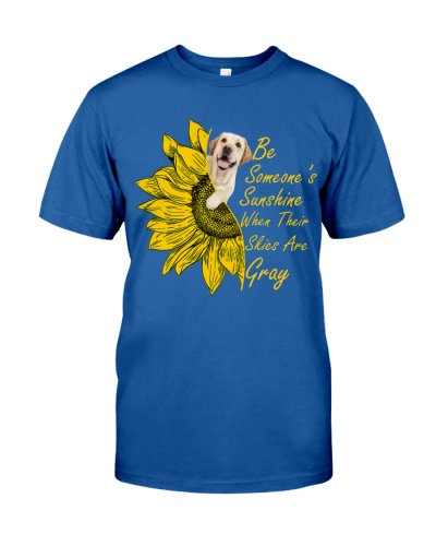SHN Sunshine skies gray Labrador Retriever