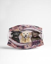Th 2 labrador retriever color pattern Cloth face mask aos-face-mask-lifestyle-22