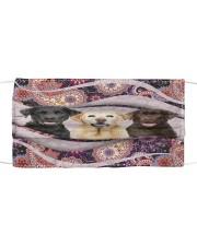 Th 2 labrador retriever color pattern Cloth face mask front