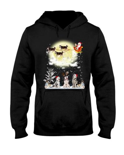 Siberian husky fun christmas