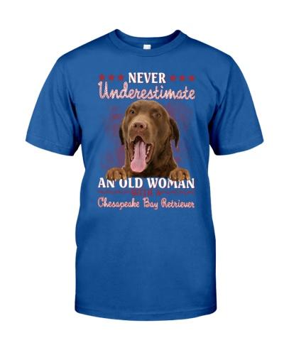 Chesapeake bay retriever underestimate old woman