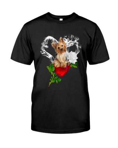 Red diamond heart love Yorkshire terrier
