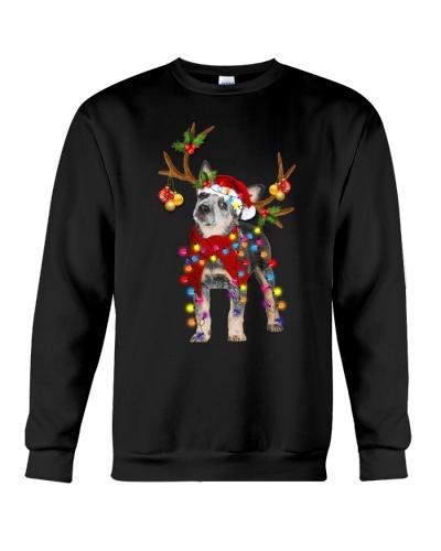 Heeler gorgeous reindeer