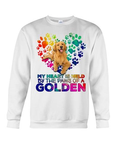 Golden retriever the paws of