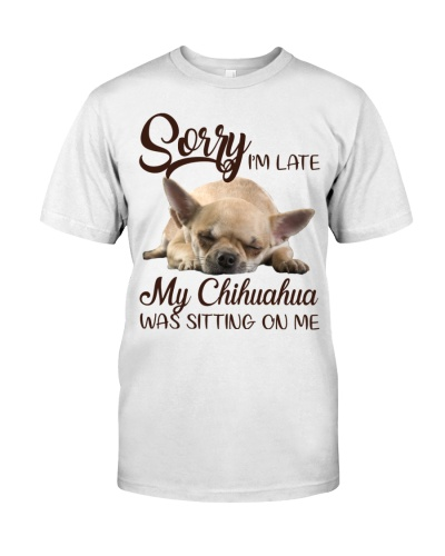 Chihuahua Sitting On Me