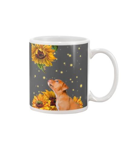 Pitbull sunflowers
