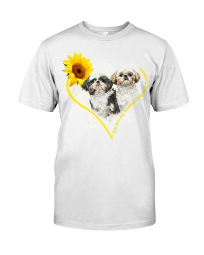 Shih tzu heart sunflower