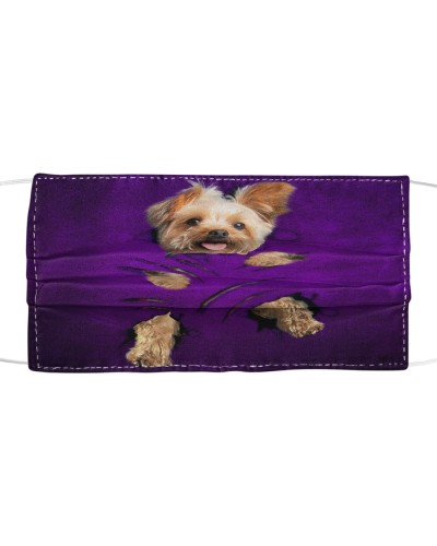SHN 7 Scratches of claws purple Yorkshire Terrier
