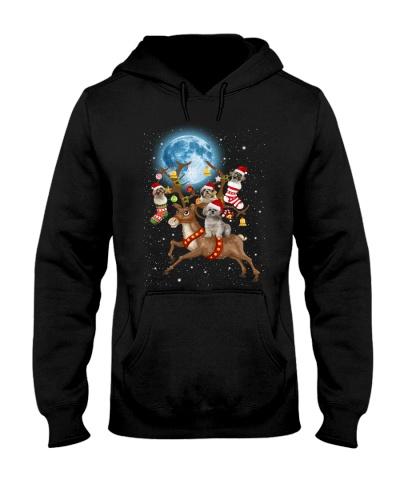 Qhn 10 Reindeer Bring Present To You Shih Tzu