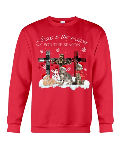 SHN 9 Jesus is the reason for the season Cat shirt