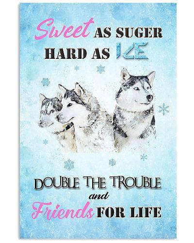 Husky dogs sweet as sugar
