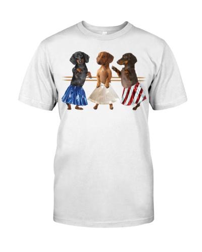 dt 8 dachshund are wearing ballet dress 23520