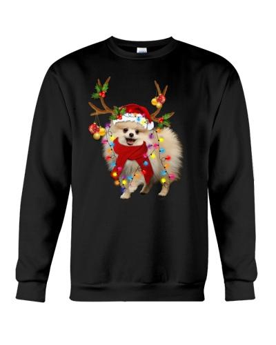 Pomeranian gorgeous reindeer