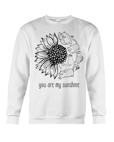 Ln cat sunflower and sunshine