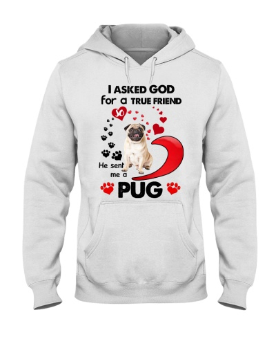 SHN 7 Ask GOD for true friend Pug shirt