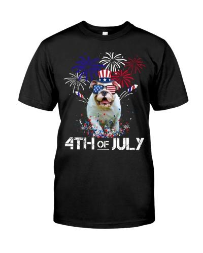 ln 2 bulldog flag color fireworks