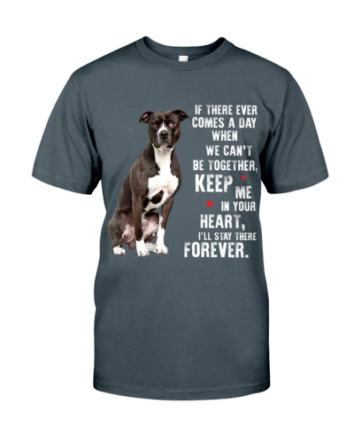 Keep me in your heart stay there forever Pitbull
