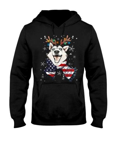 Siberian husky wears scraf
