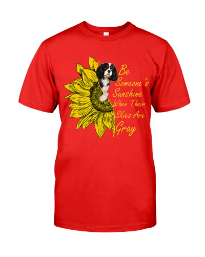 SHN Sunshine skies gray Cavalier King Charles