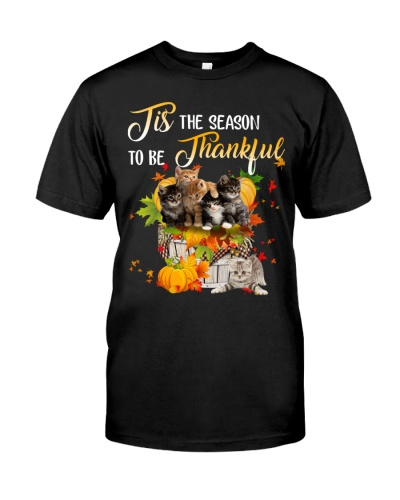 Cats the reason to be thanksful