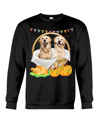 Golden retriever and thanks giving
