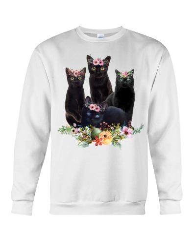 Cat magical animals