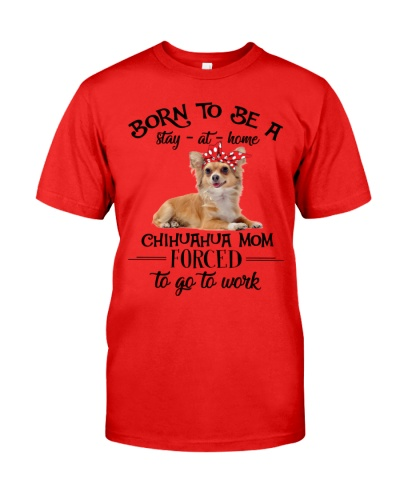 dt 8 chihuahua MOM