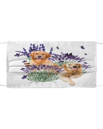 Golden Retriever with lavender