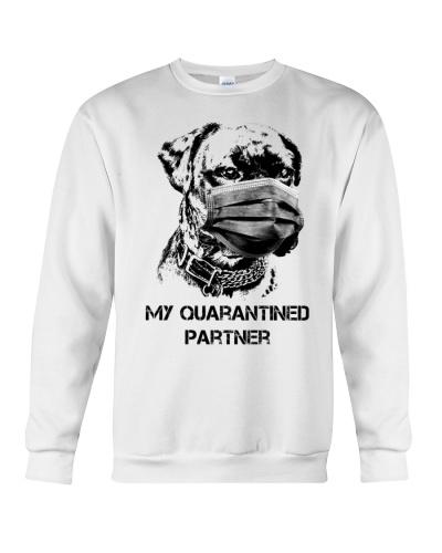 Ln boxer my quarantined partner