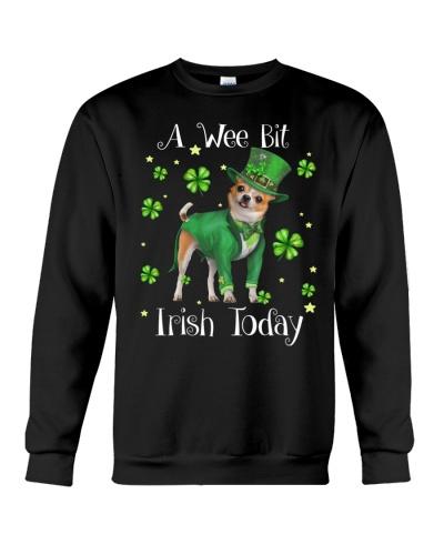 Chihuahua wee bit irish today