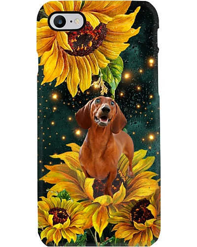 Dachshund in the light sunflower world be a dog