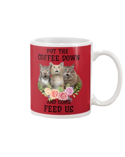 Cat come feed us