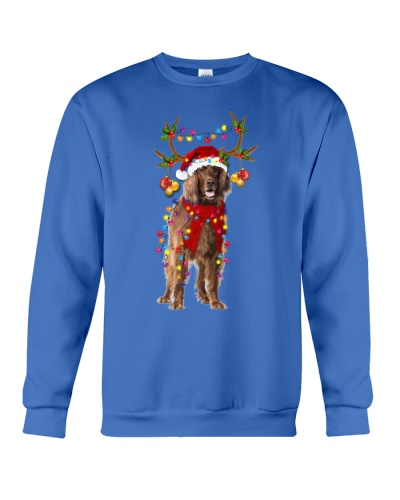 Irish Setter gorgeous reindeer