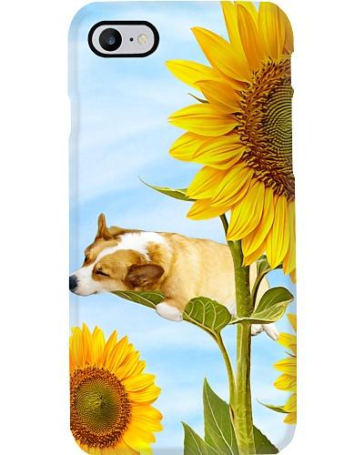 Corgi Sunflower