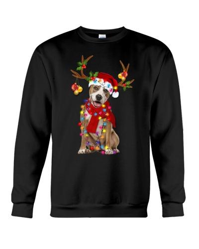 Pitbull gorgeous reindeer