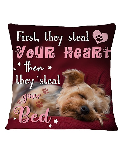 Yorkshire Terrier Steal Your Bed