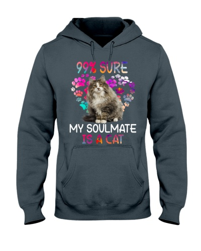 My soulmate is a Cat