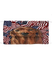 TH 32 Rhodesian Ridgeback In USA Pattern Cloth face mask front